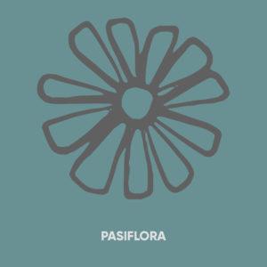 Pasiflora. La Casa de la Miel.